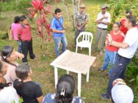 Asociaciones Red Local del Páramo Vereda Pedregal
